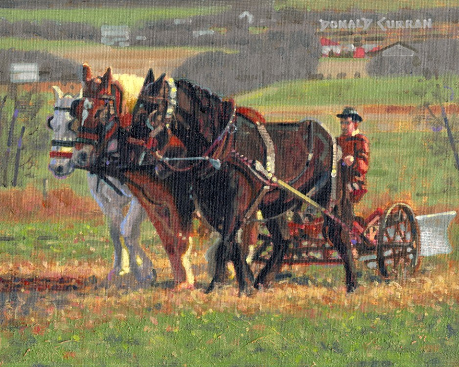 """Amish Farmer"" original fine art by Donald Curran"