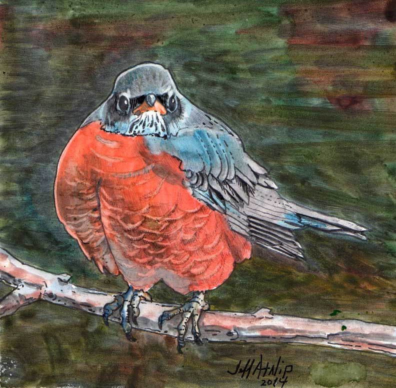 """Fat Bird"" original fine art by Jeff Atnip"