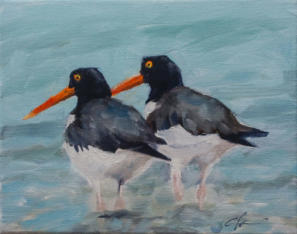 """Oyster Catchers"" original fine art by Clair Hartmann"