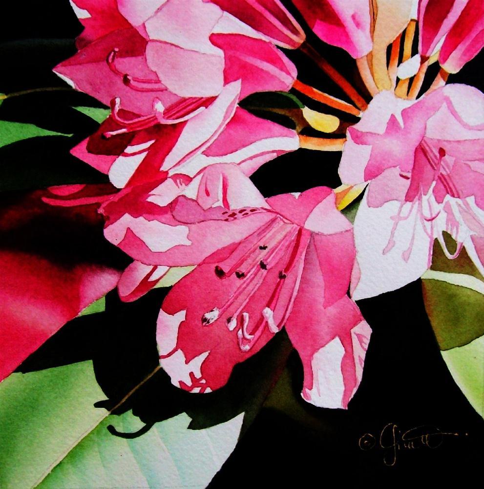 """""""Pink Rhodie"""" original fine art by Jacqueline Gnott, whs"""