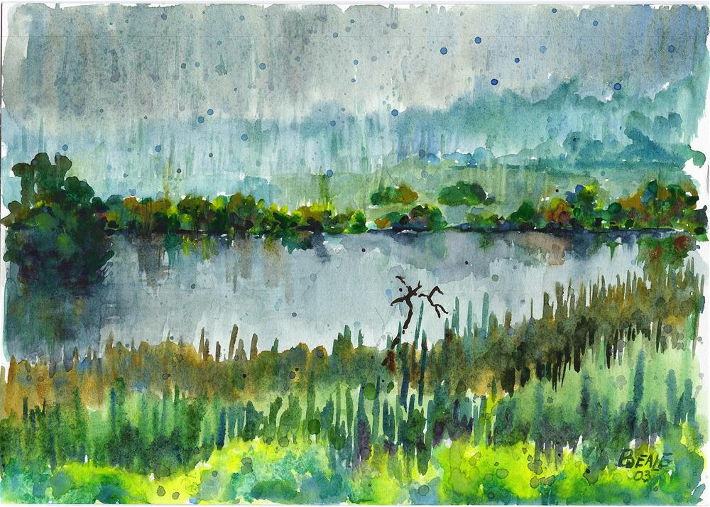 """Summer Shower on McCloy Pond"" original fine art by  David Beale"