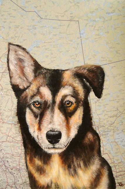 """Sled-dog puppy"" original fine art by Karen Robinson"