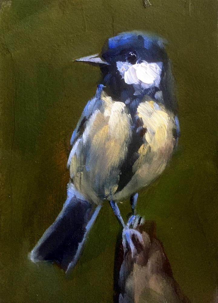 """Great Tit Portrait"" original fine art by Gary Bruton"