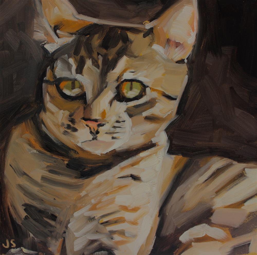 """""""Ms. Tabby"""" original fine art by Jamie Stevens"""