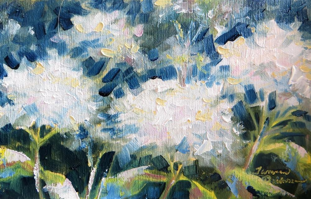 """Hydrangea in White"" original fine art by Tammie Dickerson"