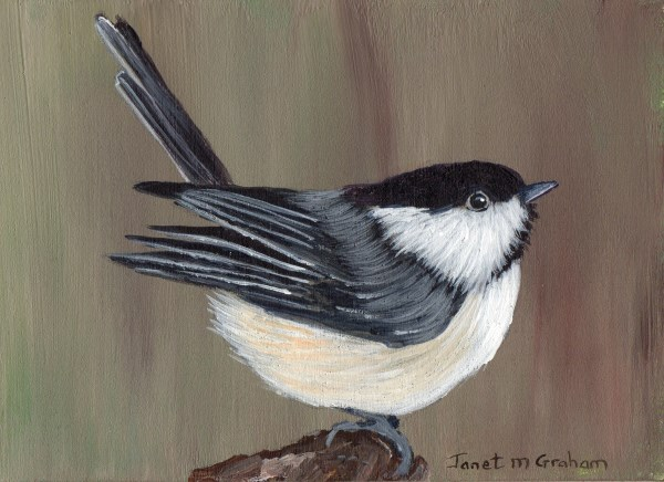 """Willow Tit ACEO"" original fine art by Janet Graham"