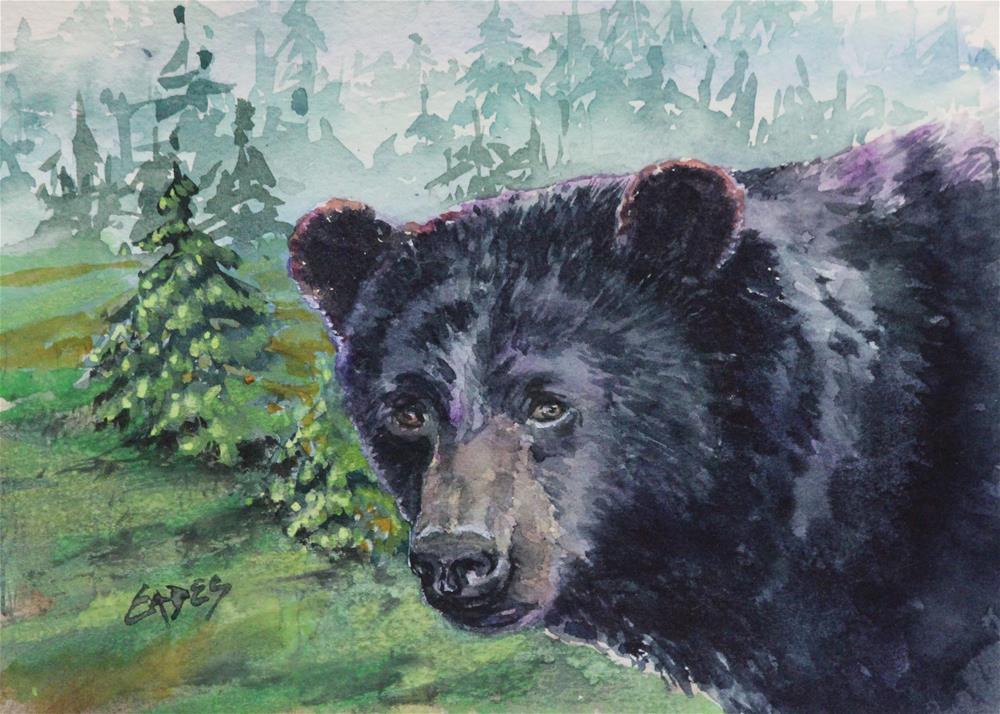 """Bear Gaze"" original fine art by Linda Eades Blackburn"