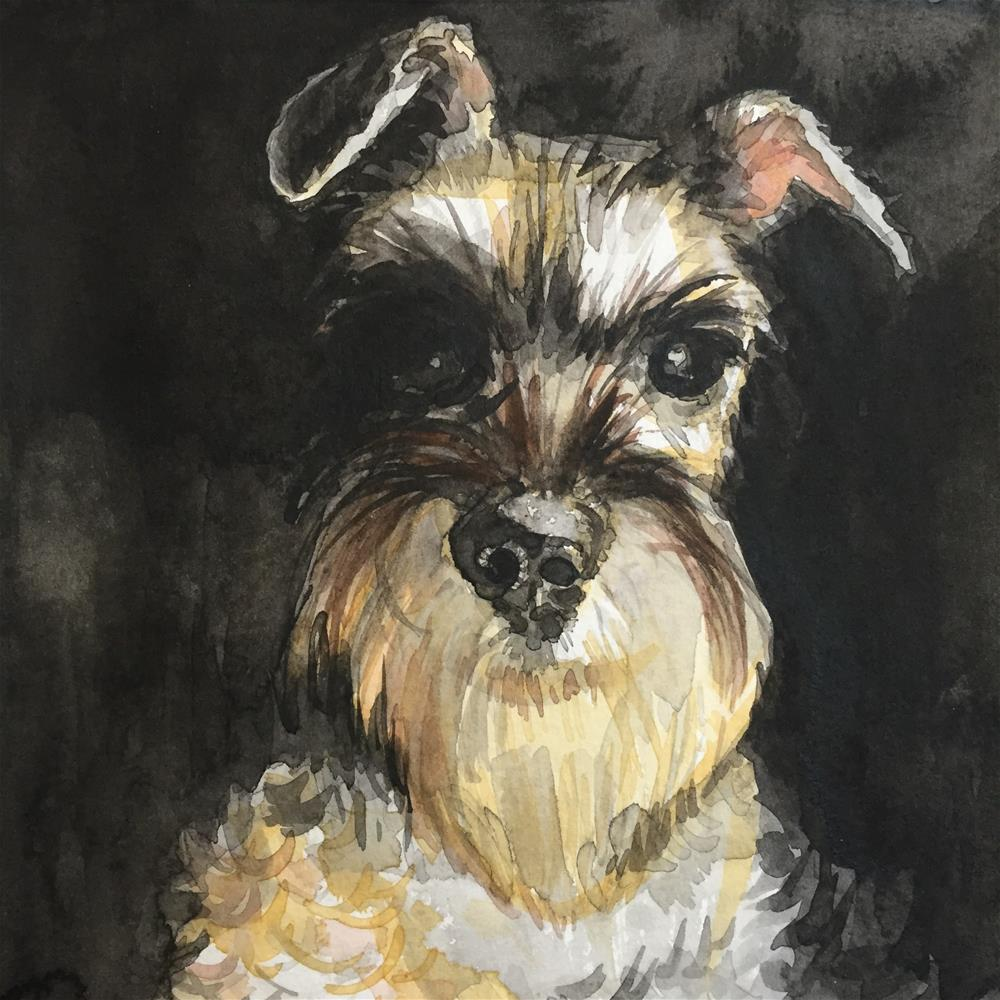 """Mini Schnauzer"" original fine art by Cindy McDonough"