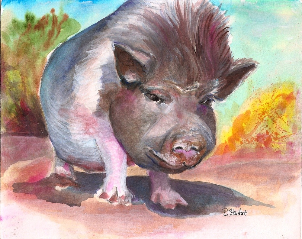 """8x10 Casey Burns a beautiful hog painting watercolor original"" original fine art by Penny Lee StewArt"