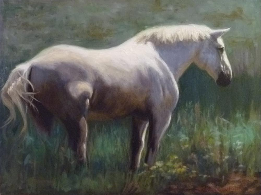 """Horse Portrait"" original fine art by Jonelle Summerfield"