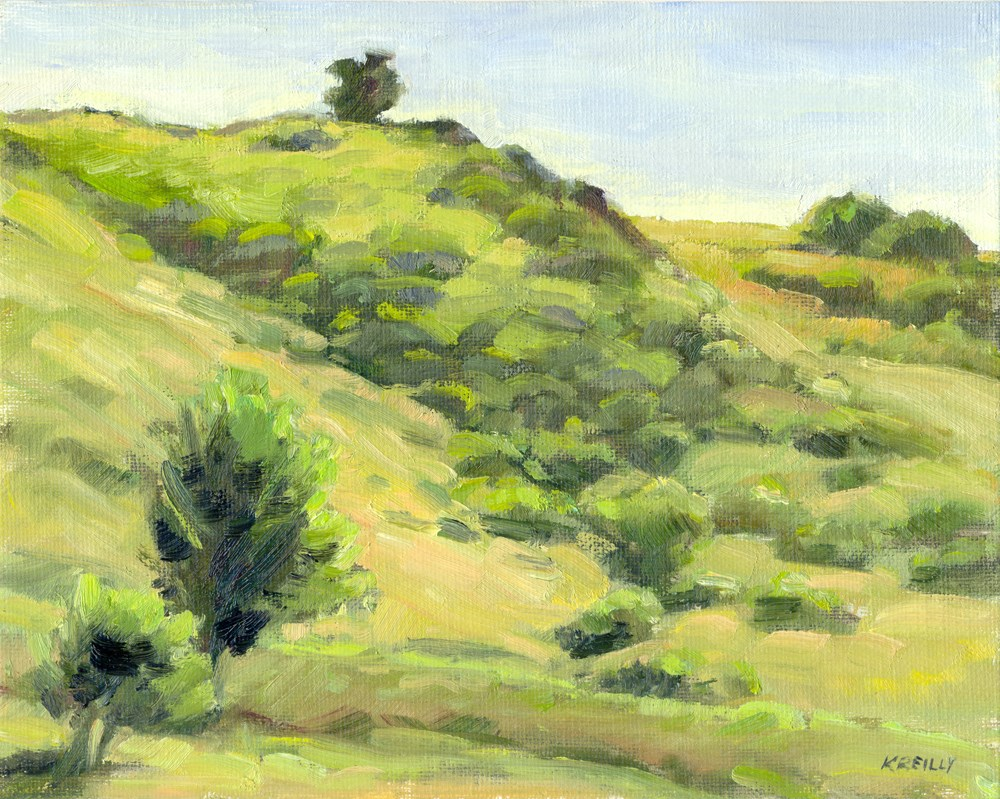"""Backlit Hillside"" original fine art by Kath Reilly"
