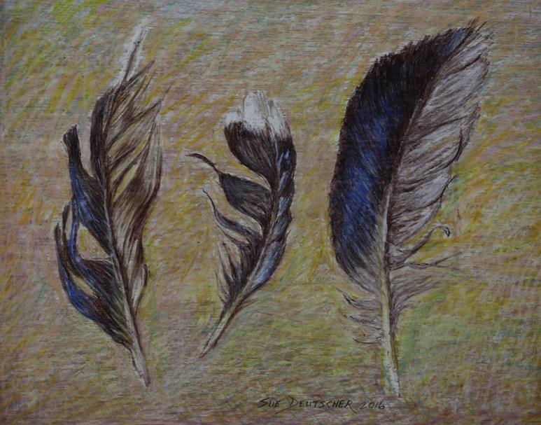 """""""Feathers"""" original fine art by Sue Deutscher"""