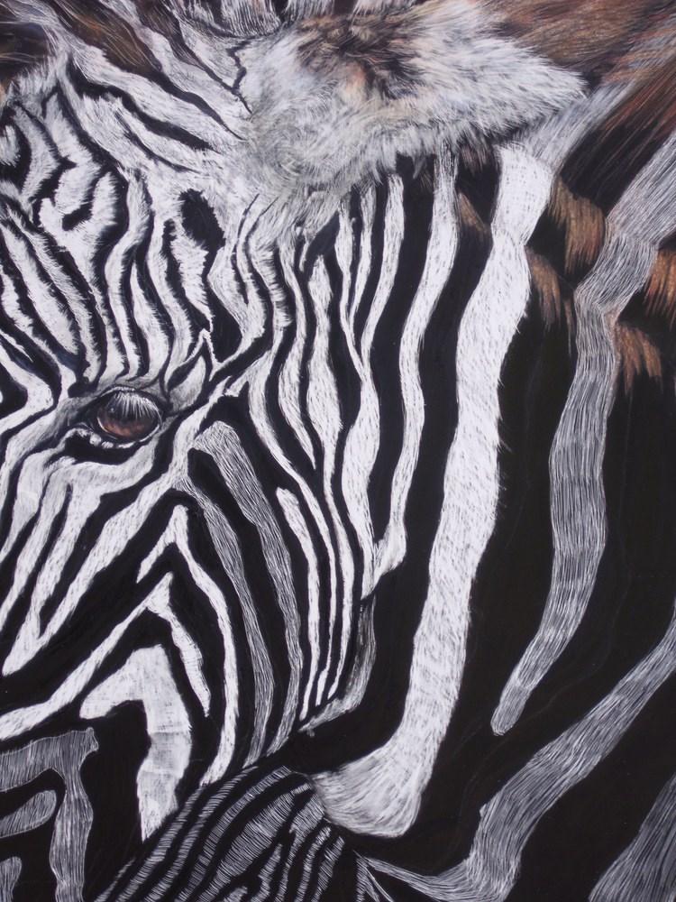 """Yikes!! Stripes!!"" original fine art by Nelvia  McGrath"