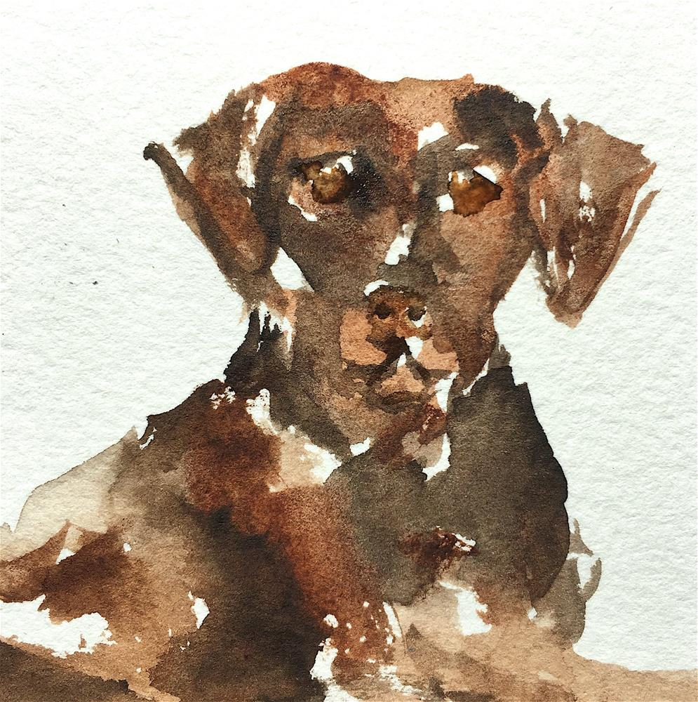 """Brown Dog, tiny sketch"" original fine art by Judith Freeman Clark"