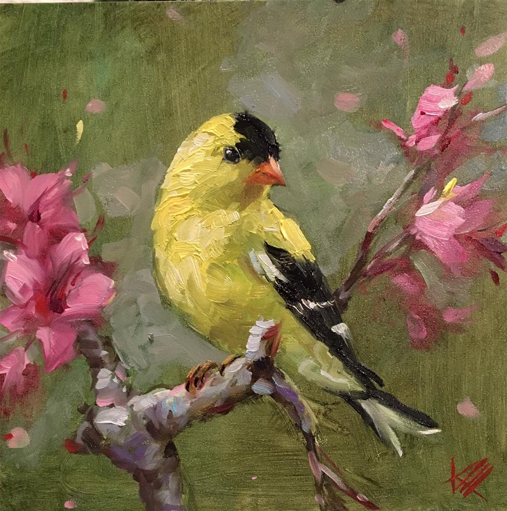 """American Goldfinch"" original fine art by Krista Eaton"