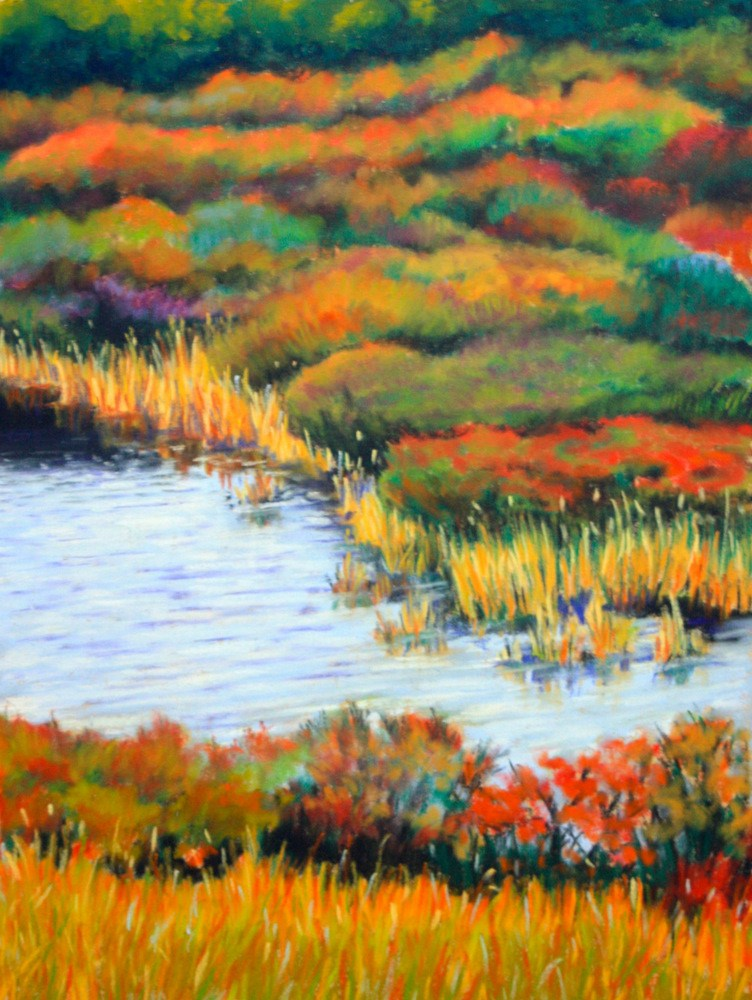 """Color on the Cape"" original fine art by Jill Bates"