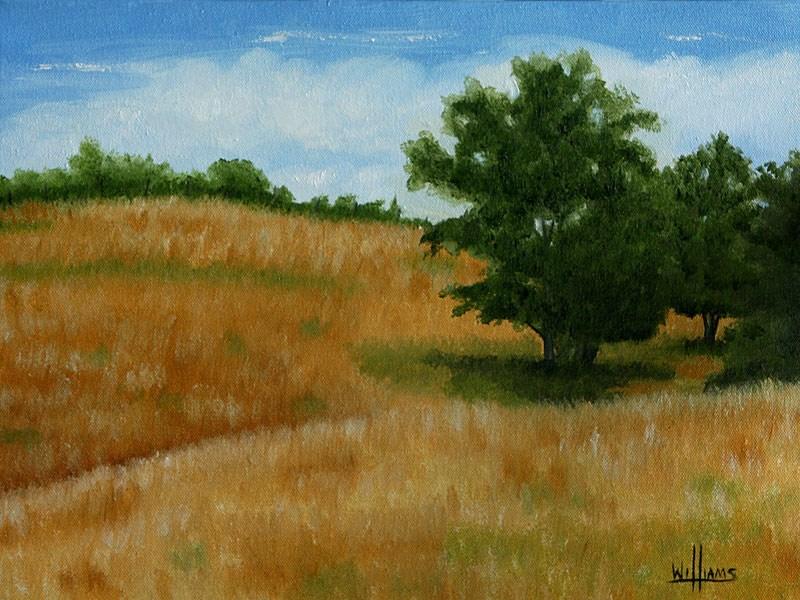 """Summer Fields"" original fine art by Sunny Williams"