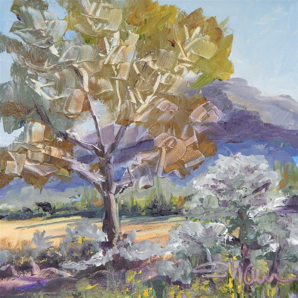 """Sonoran Scene"" original fine art by Shawn Deitch"