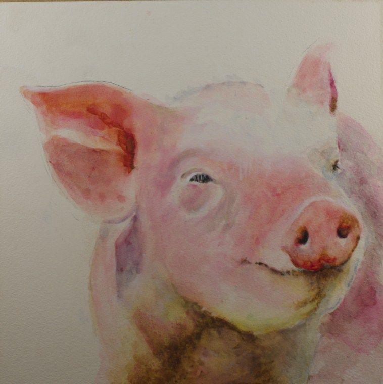 """Wilber"" original fine art by Sue Churchgrant"