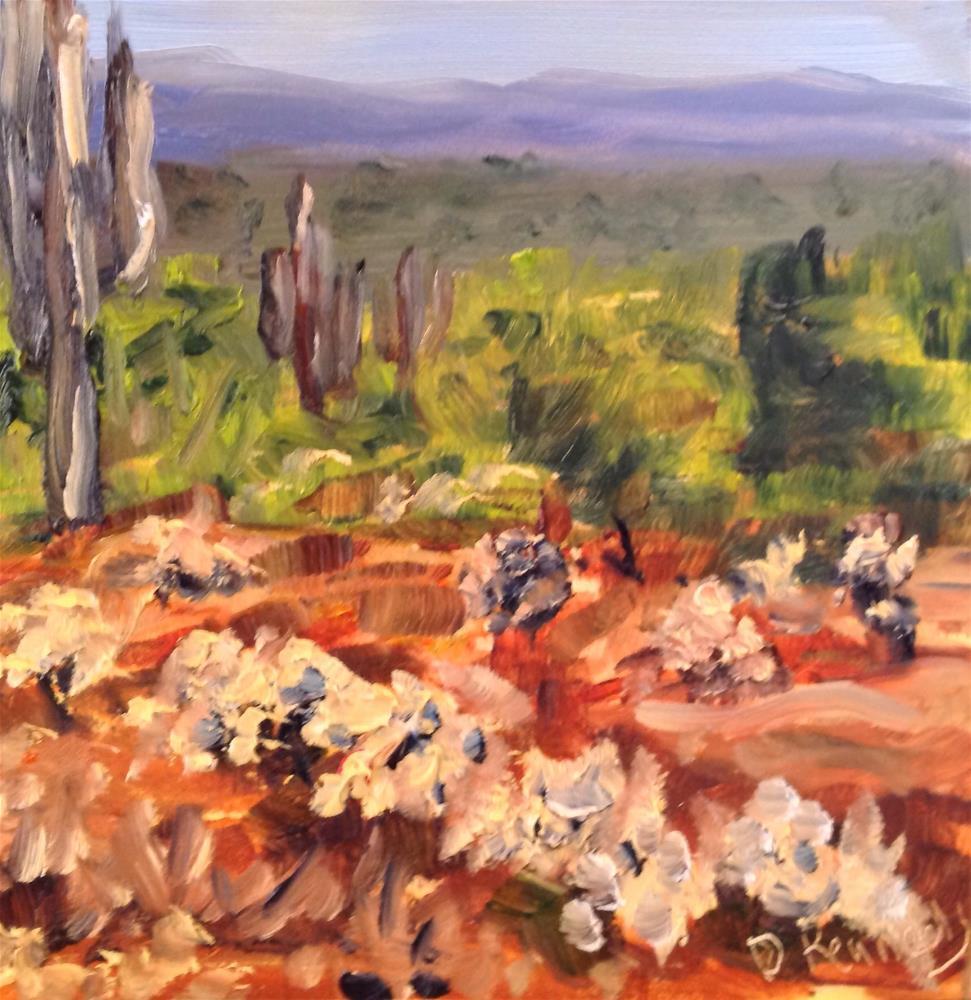 """Arizona"" original fine art by Debra Kennedy"