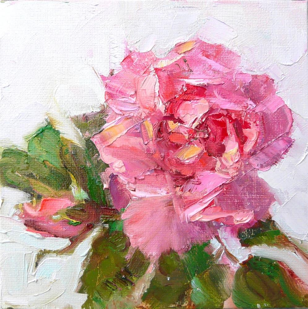 """May Rose Cutting,still life,oil on canvas,6x6,price$175"" original fine art by Joy Olney"