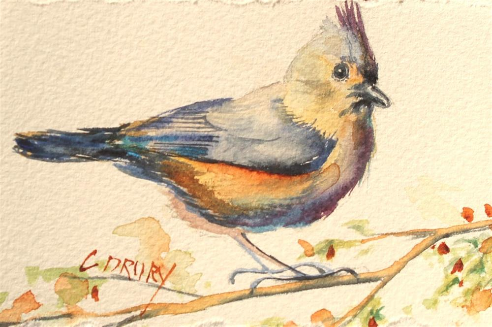 """Titmouse"" original fine art by Colleen Drury"
