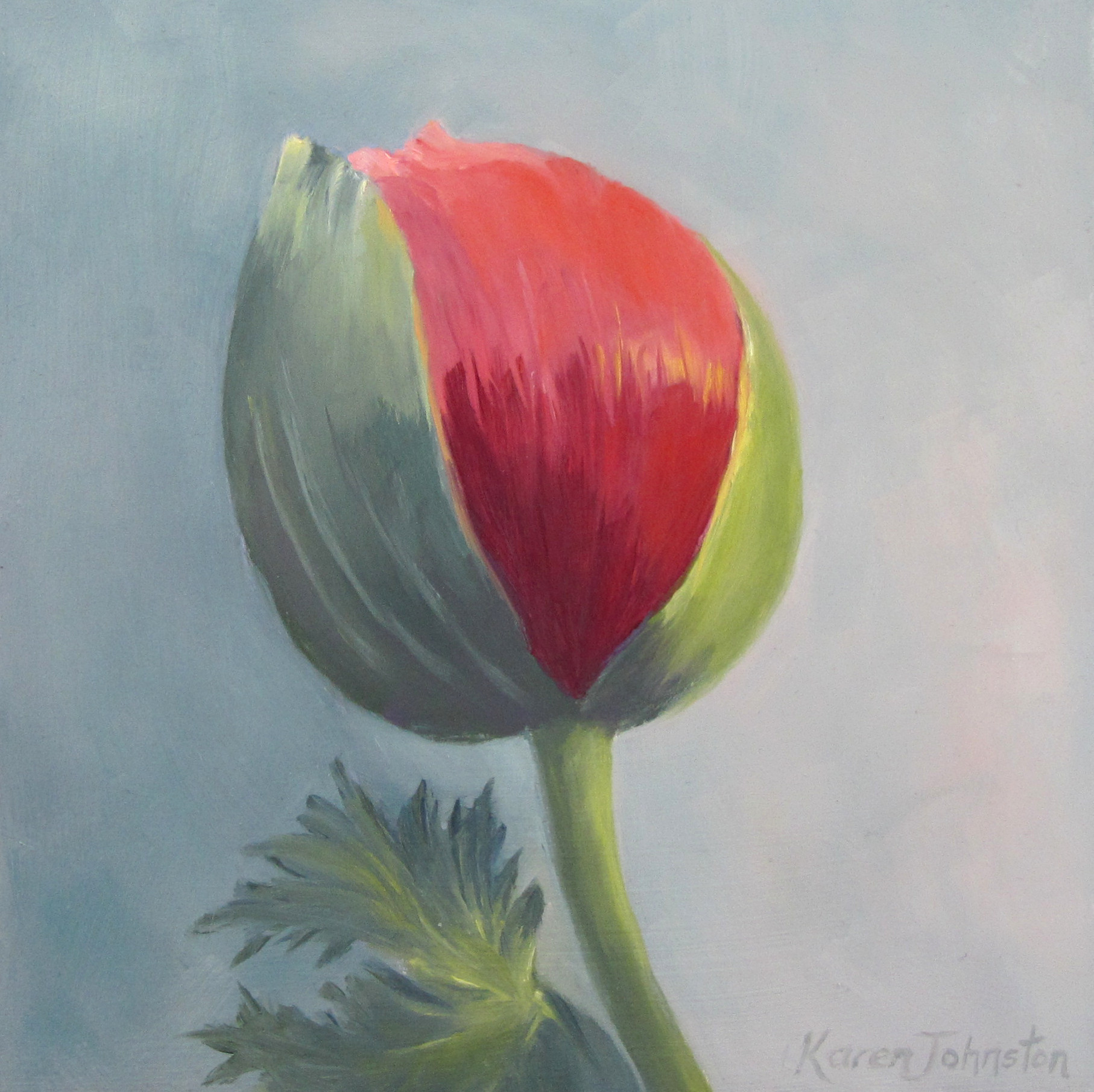 """Poppy Bud"" original fine art by Karen Johnston"