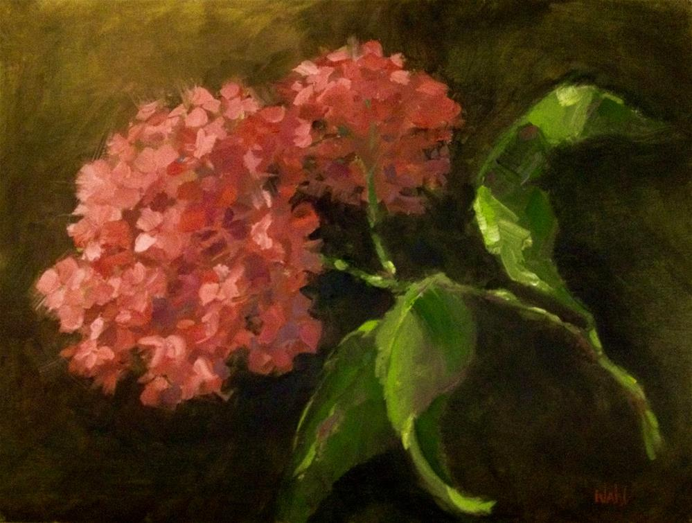 """Pink Hydrangea"" original fine art by Nancy Wahl"