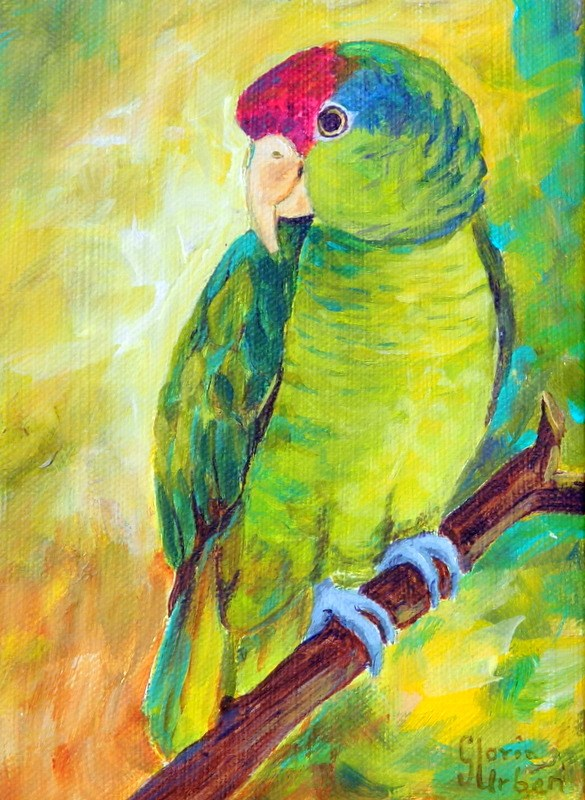 """Green Parrot"" original fine art by Gloria Urban"