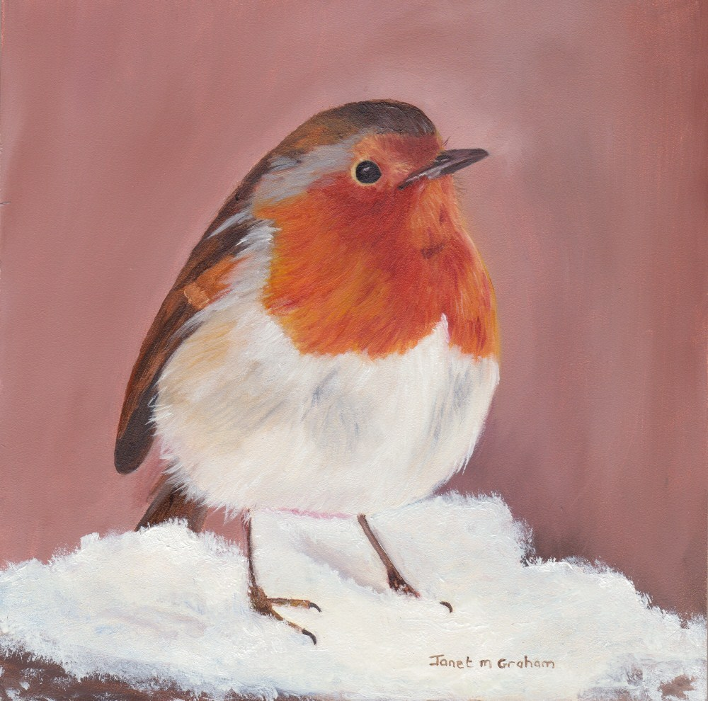 """Winter Robin"" original fine art by Janet Graham"