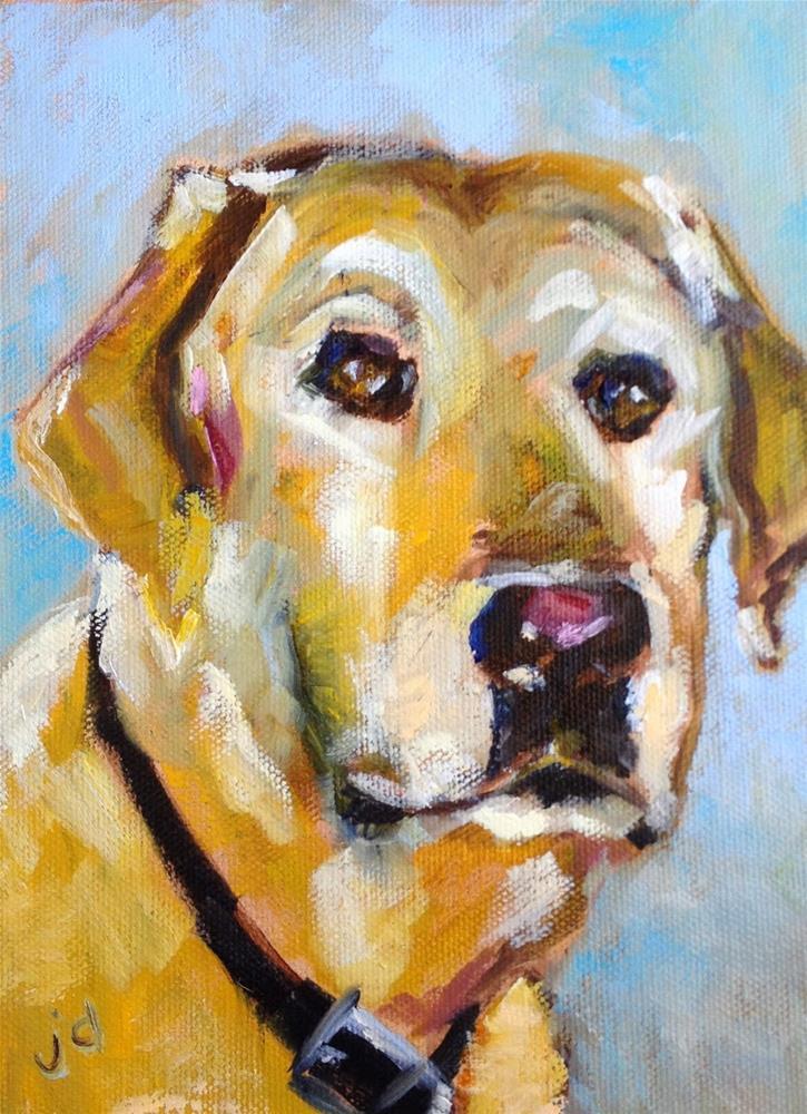 """Baxter"" original fine art by Jean Delaney"