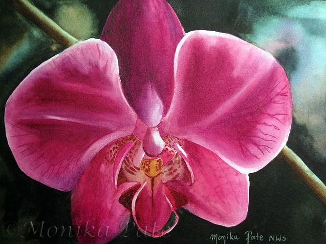 """Purple Orchid"" original fine art by Monika Pate"