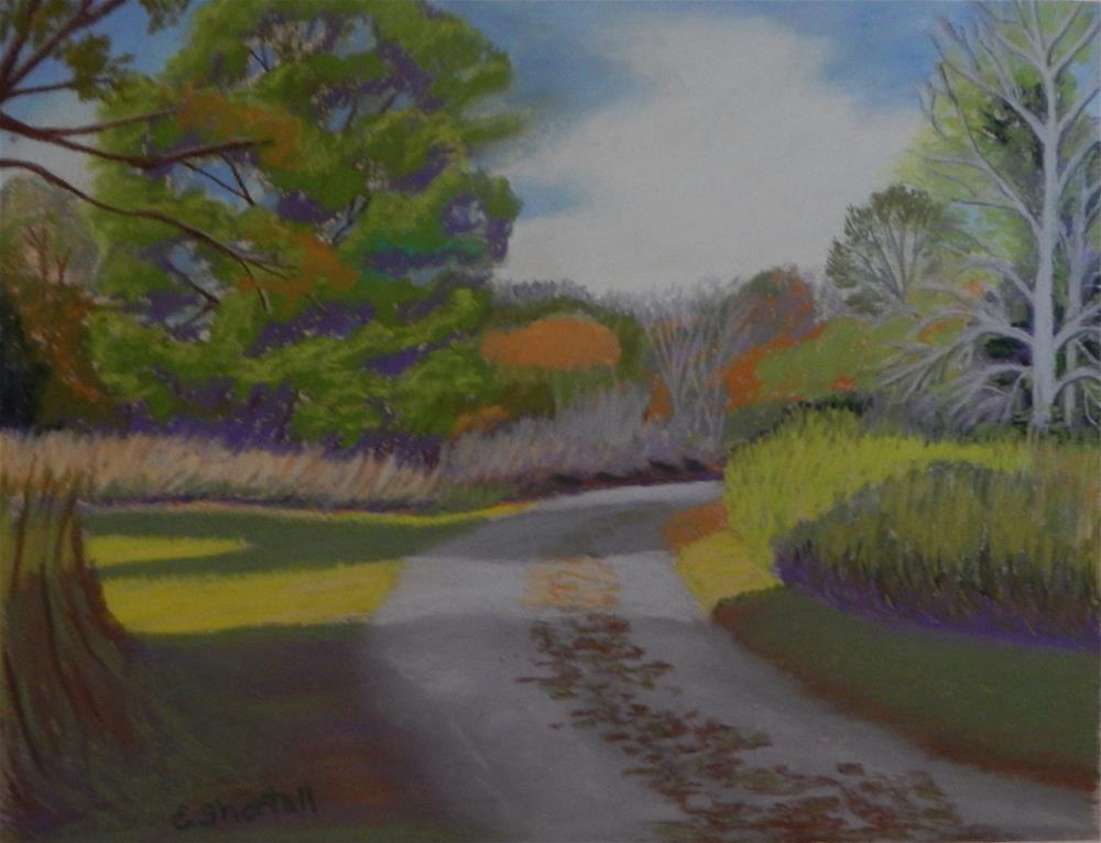 """Afternoon at Adkins Arboretum"" original fine art by Elaine Shortall"