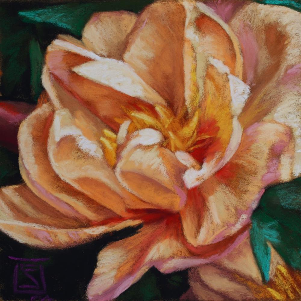 """Peach Begonia"" original fine art by Sheila Evans"