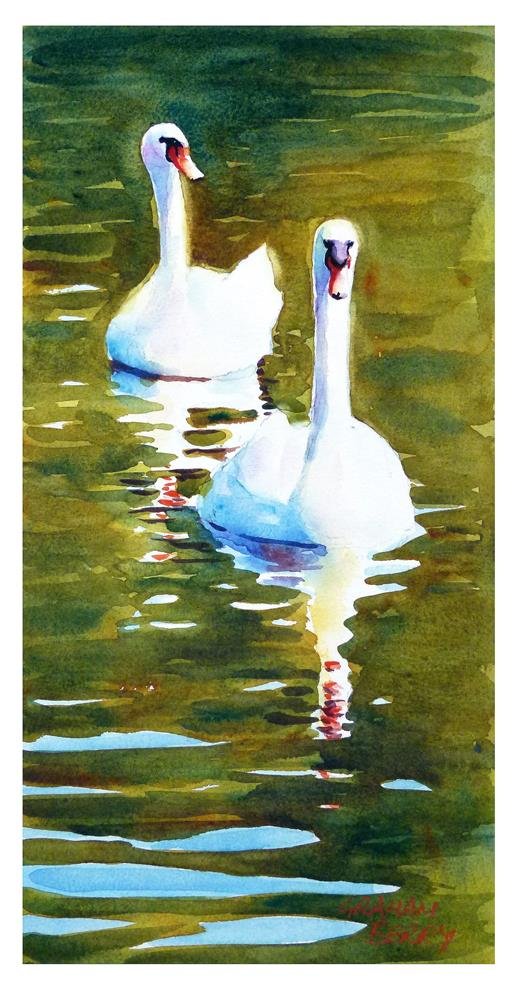 """Two swans"" original fine art by Graham Berry"