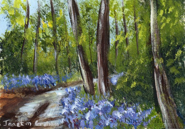 """Bluebell Trail ACEO"" original fine art by Janet Graham"