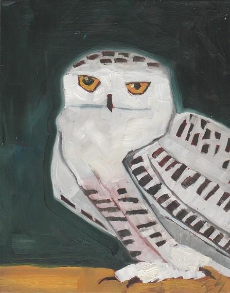 """""""Snowy Owl"""" original fine art by Elizabeth See"""