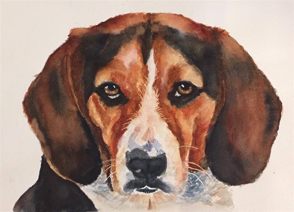 """""""Archie"""" original fine art by Melissa Gresham"""