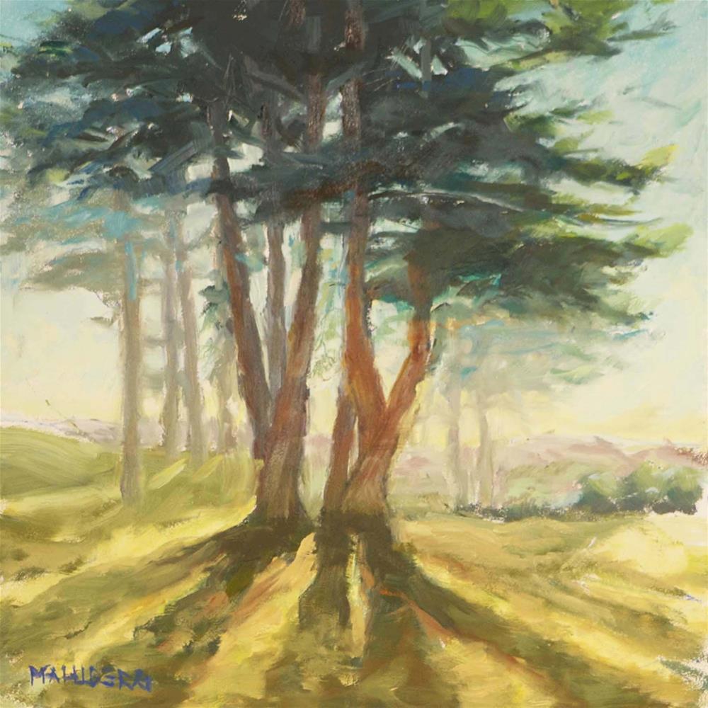 """Monterey Cypress Teal"" original fine art by Cynthia Mahlberg"