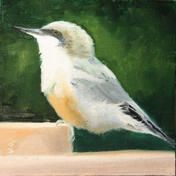 """My Little Chickadee"" original fine art by Jane Frederick"