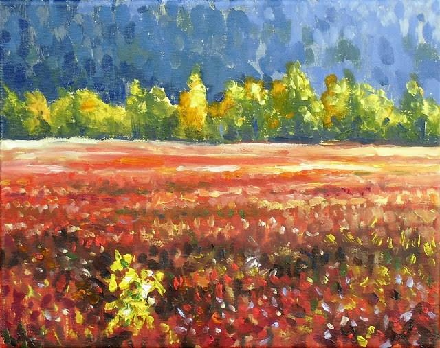 """Blueberry fields near winter"" original fine art by Hilary J. England"
