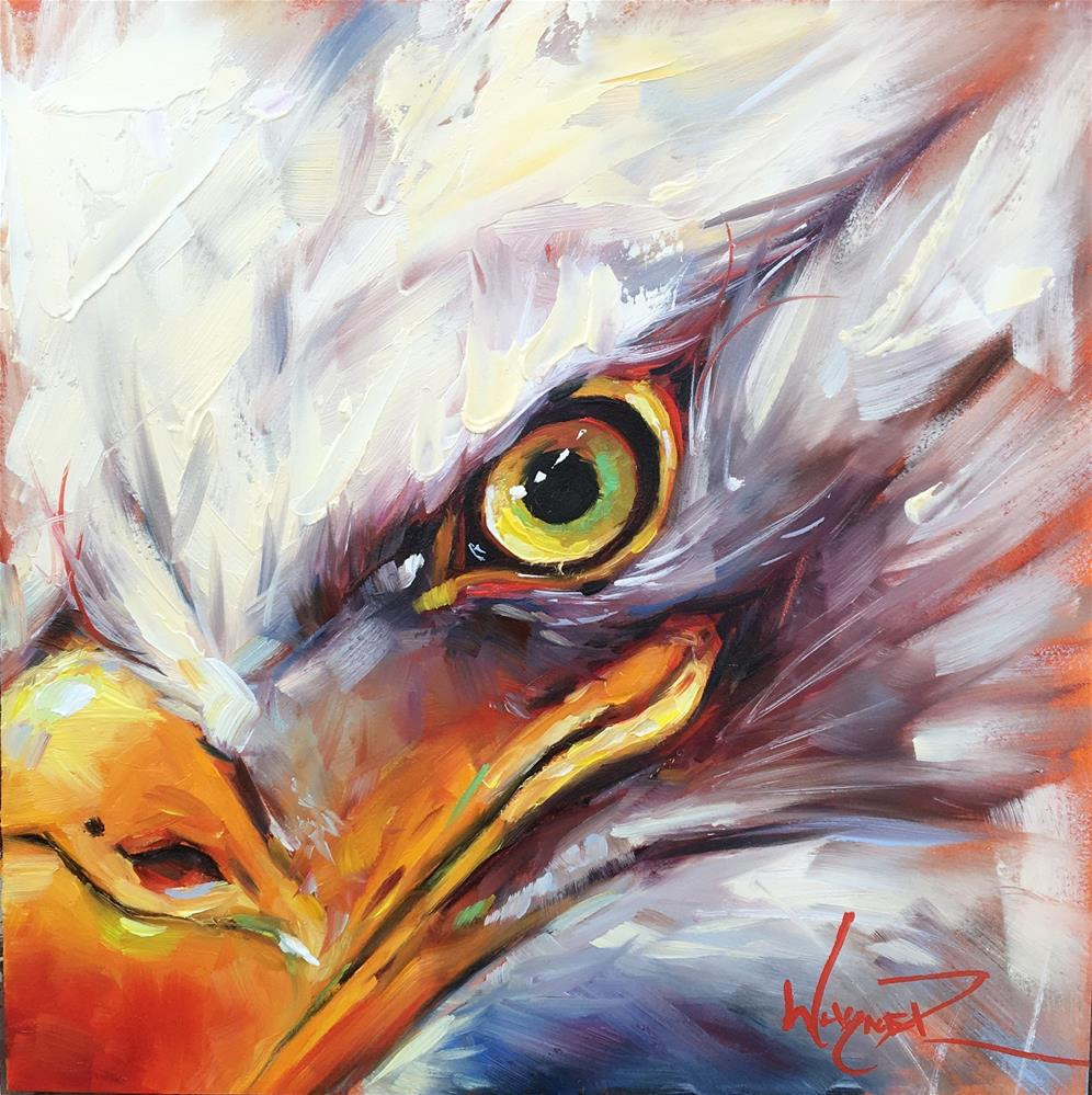 """Eagle Eye"" original fine art by Olga Wagner"