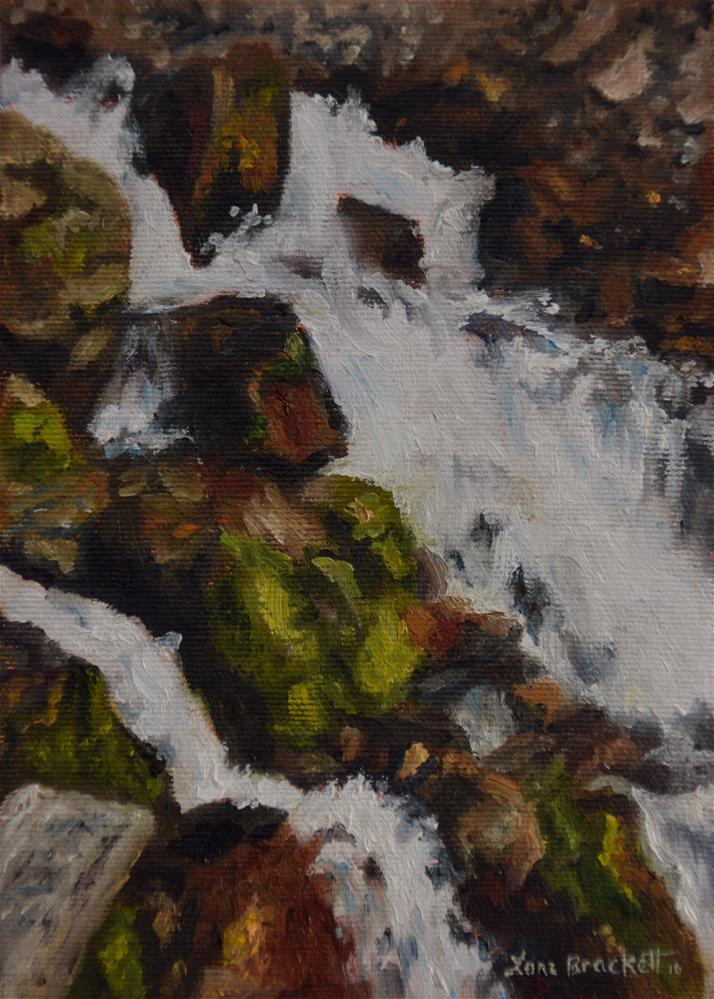 """Springs Up Close"" original fine art by Lori Brackett"