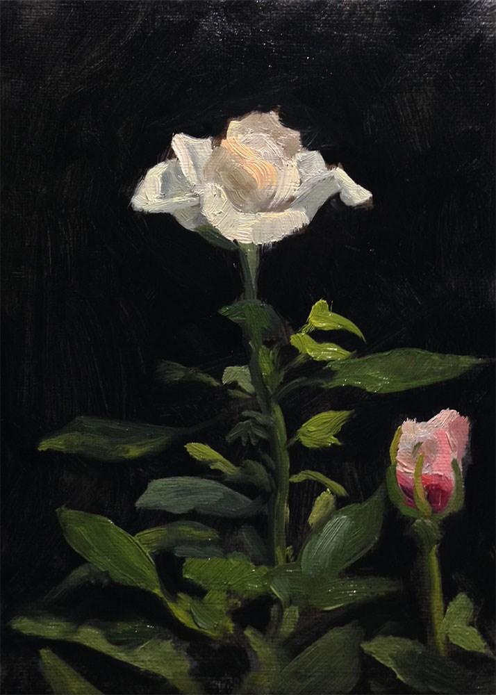 """Anniversary Rose"" original fine art by Chris Beaven"