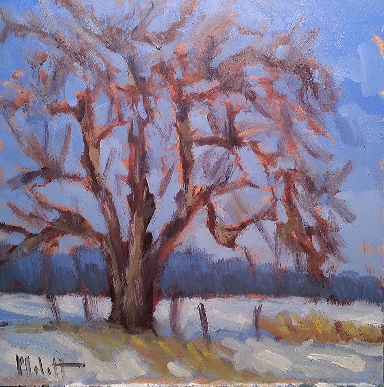 """First Snow Countryside Landscape Original Oil Painting"" original fine art by Heidi Malott"