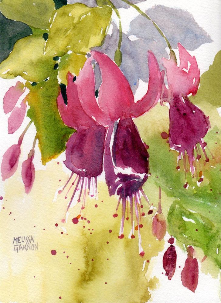 """Hanging Fuchsias"" original fine art by Melissa Gannon"