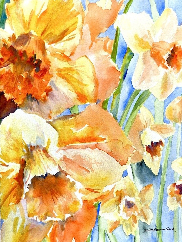 """Jonquils and Daffodils, study"" original fine art by Judith Freeman Clark"
