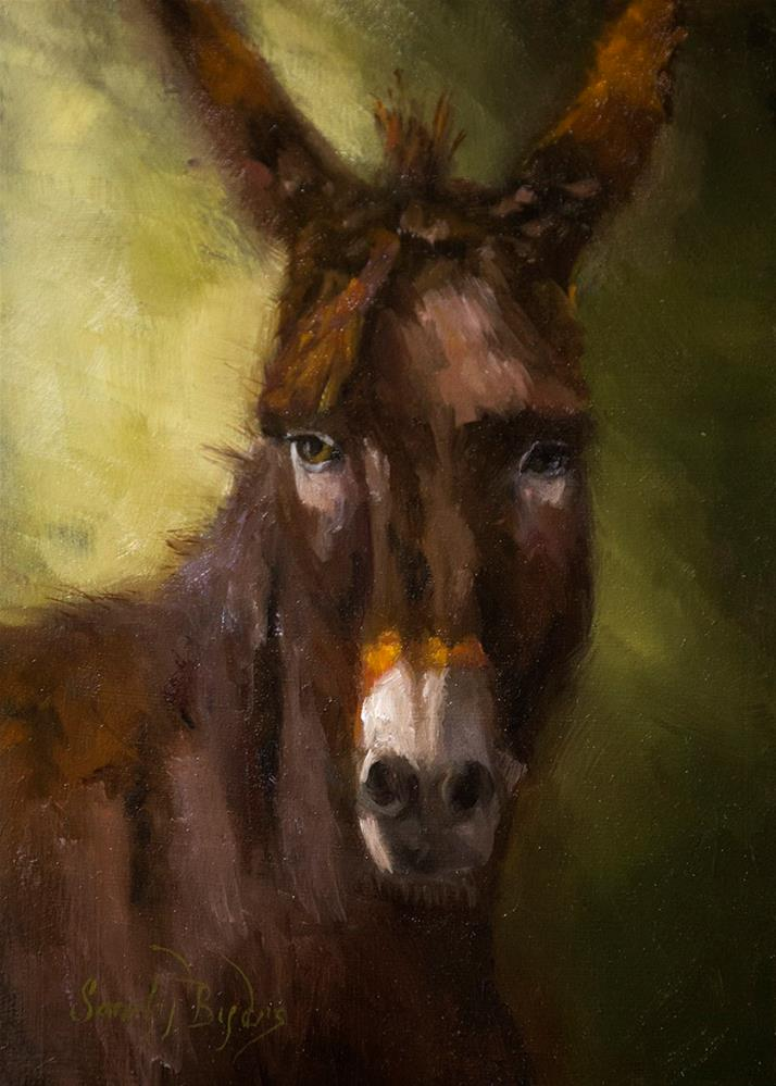 """Besos, the Burro - study"" original fine art by Sandy Byers"