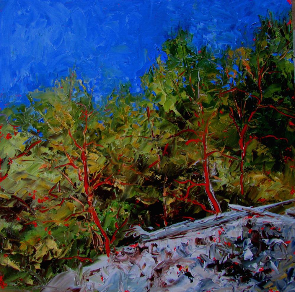 """8 x 8 inch oil Arbutus on the Ridge"" original fine art by Linda Yurgensen"