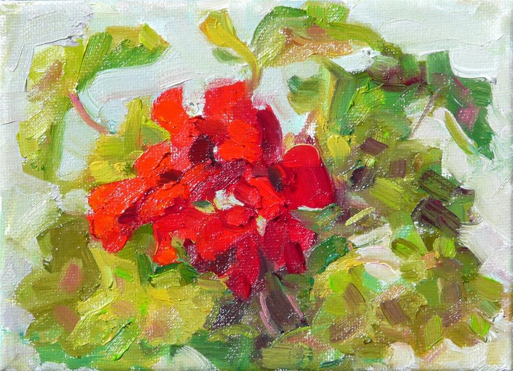 """April Geranium,still life,oil on canvas,5x7,price$125"" original fine art by Joy Olney"